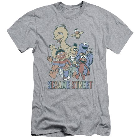 Sesame Street Classic Children's TV Show Colorful Group Adult Slim T-Shirt Tee