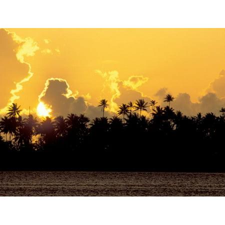Palm Trees at Sunset, Bora Bora, French Polynesia Print Wall Art By Art
