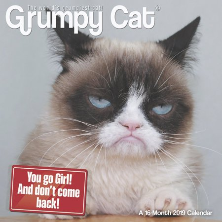 Day Dream Grumpy Cat Mini Wall Calendar - Animals
