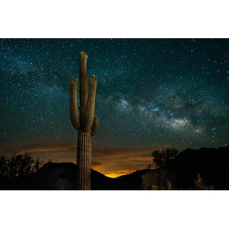 Saguaro Cactus and Milky Way Desert Botanical Sunset Landscape Photography Print Wall Art By raphoto (Cactus Landscape Art)