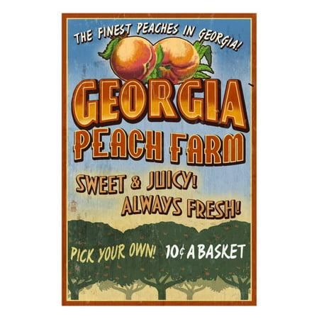 Georgia - Peach Farm Print Wall Art By Lantern Press