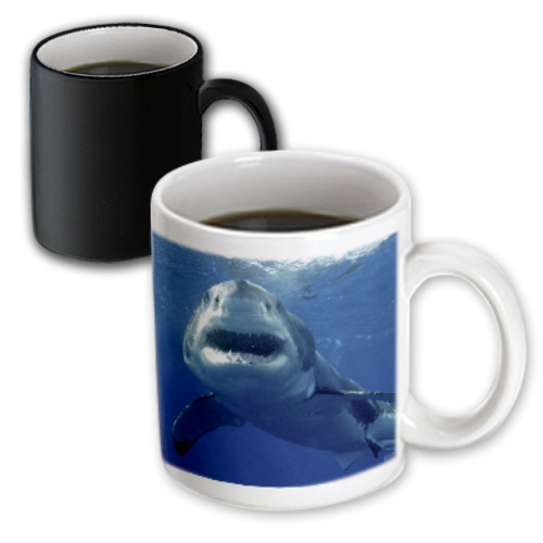 3dRose Great White Shark - Magic Transforming Mug, 11-ounce