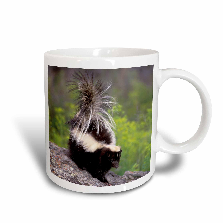 10 12 Ounce Coffee Mugs Ceramic