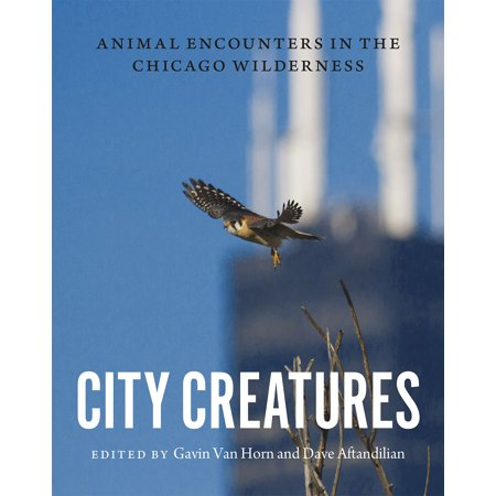 Wilderness Animal - City Creatures: Animal Encounters in the Chicago Wilderness