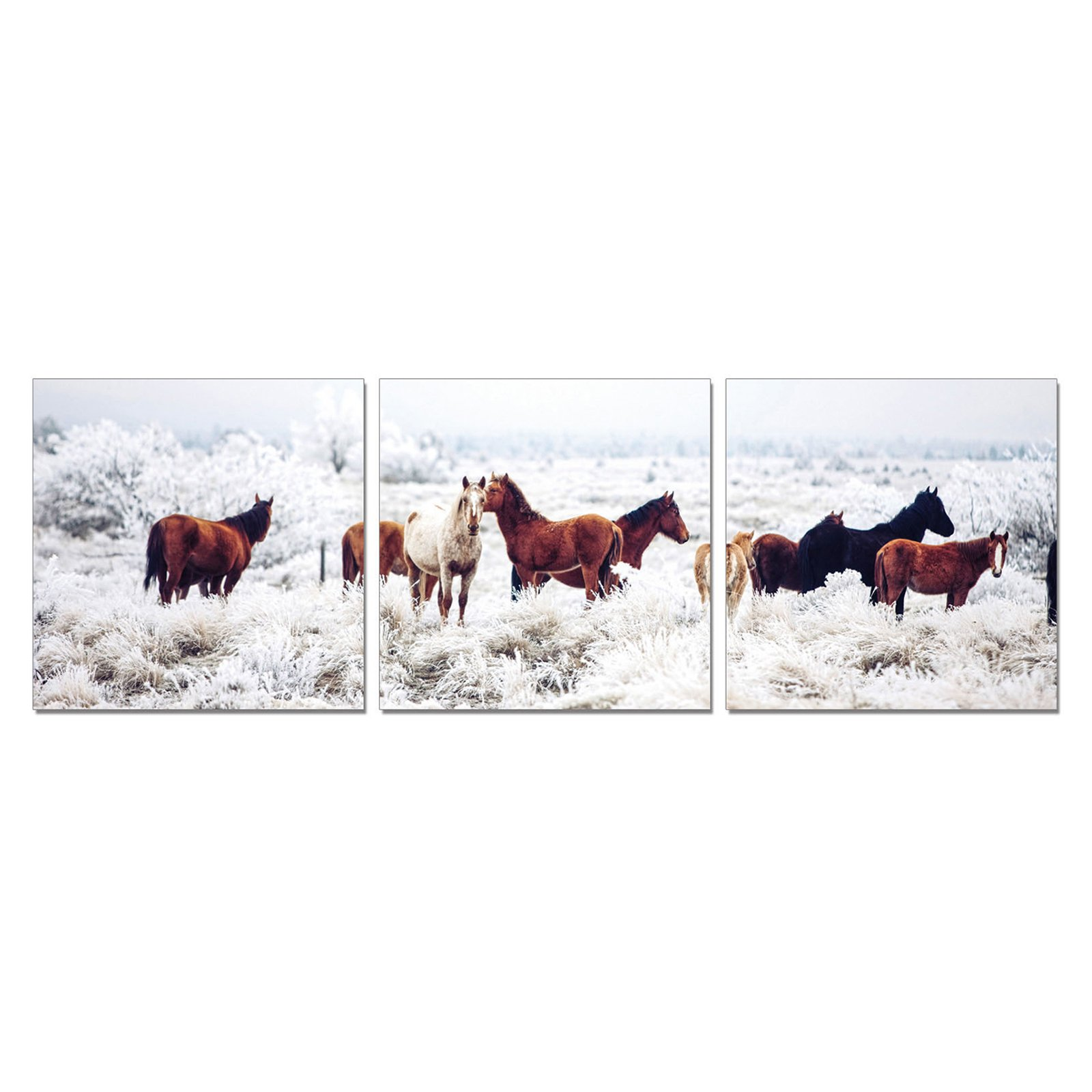 Furinno SeniA Horses on Plains 3-Panel MDF Framed Photography Triptych Print, 48 x 16-in