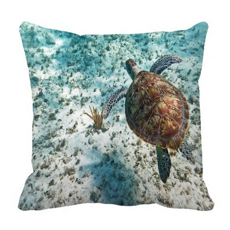 PHFZK Animal Pillow Case, Green Turtle in Nature of Caribbean Sea Pillowcase Throw Pillow Cushion Cover Two Sides Size 18x18