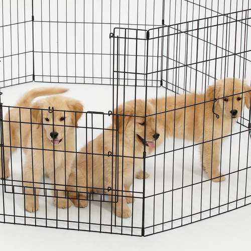 Midwest Homes For Pets Exercise Pet Pen