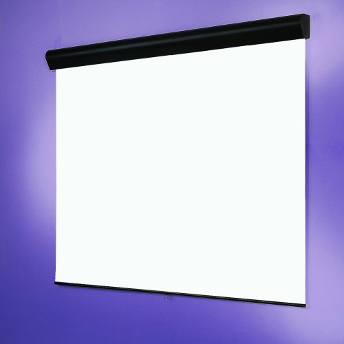 Draper Silhouette Manual Projection Screen 202258