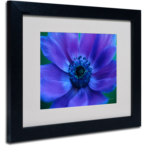 Trademark Fine Art 'Beautiful Anemone' Matted Framed Art by Kathy Yates