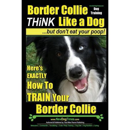 Border Collie Dog Training   Think Like A Dog  But Dont Eat Your Poop   Heres Exactly How To Train Your Border Collie