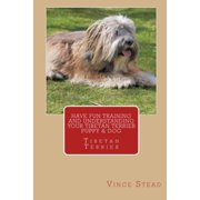 Have Fun Training and Understanding Your Tibetan Terrier Puppy & Dog (Paperback)