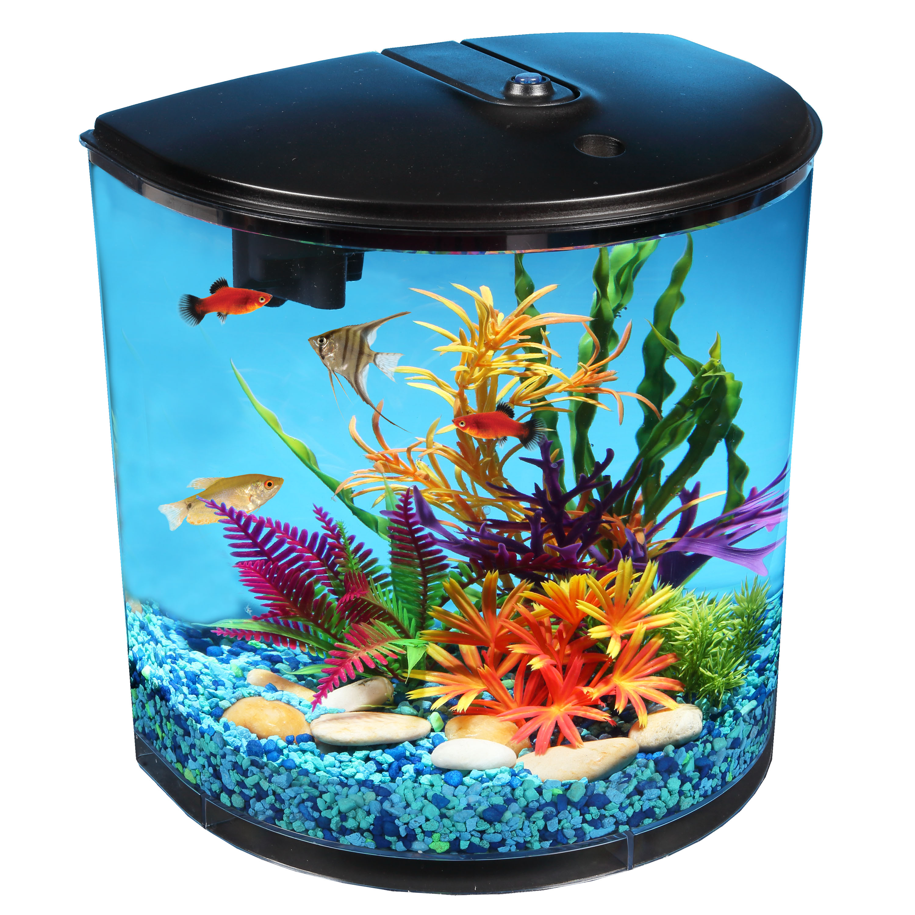 Hawkeye 180 View Fish Tank LED Lighting and Filter 3 5 Gallon