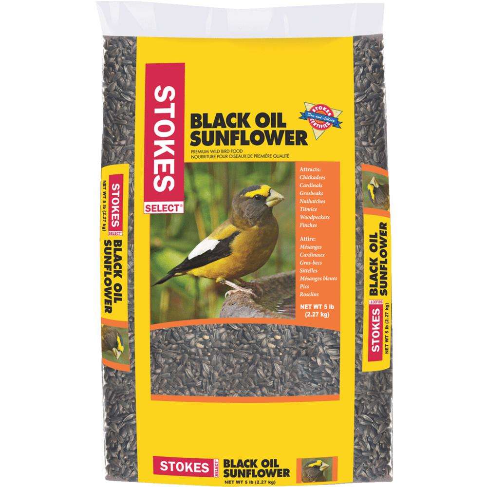 Red River Commodities 5lb Oil Sunflower Seed 593