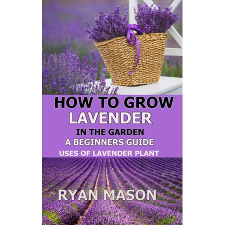 How to Grow Lavender in the Garden - eBook (Best Way To Grow Lavender)