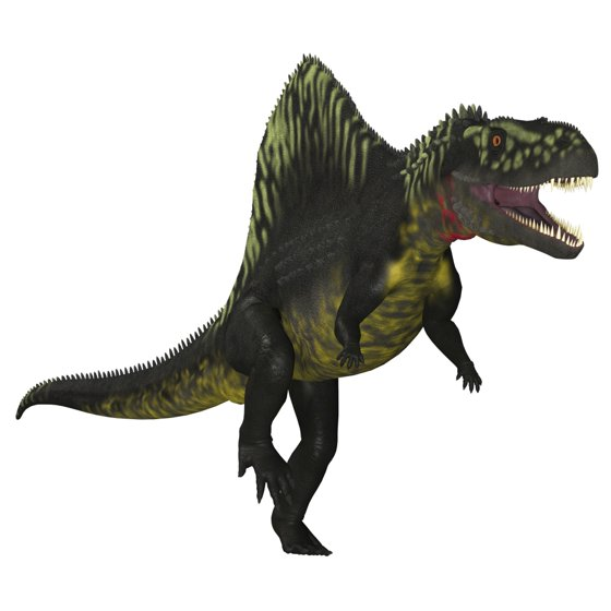 29 Best Corey Reagan Interiors Images On Pinterest: Arizonasaurus Dinosaur On White Background Canvas Art