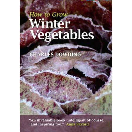How to Grow Winter Vegetables - eBook