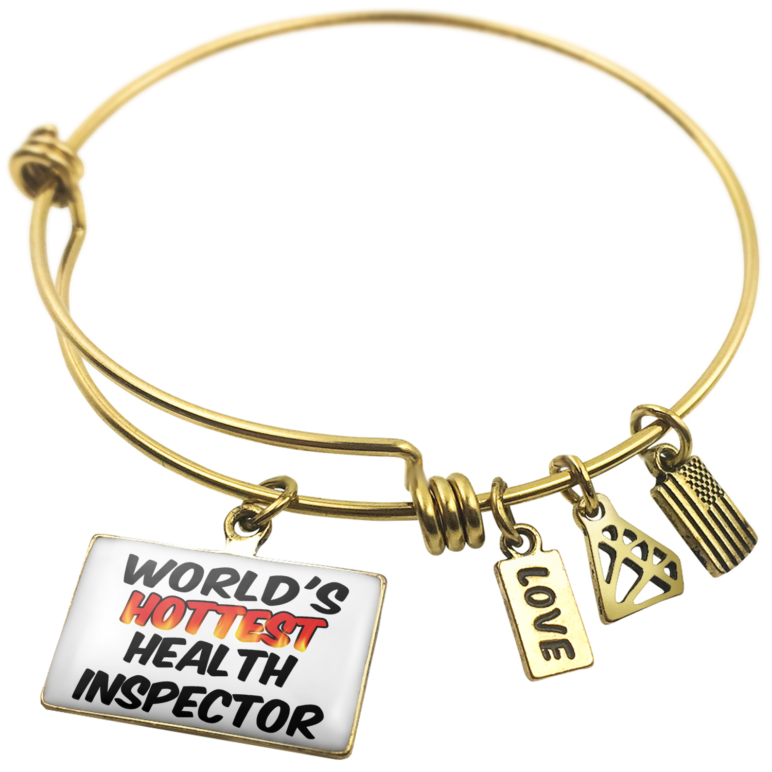 Expandable Wire Bangle Bracelet Worlds hottest Health Inspector - NEONBLOND