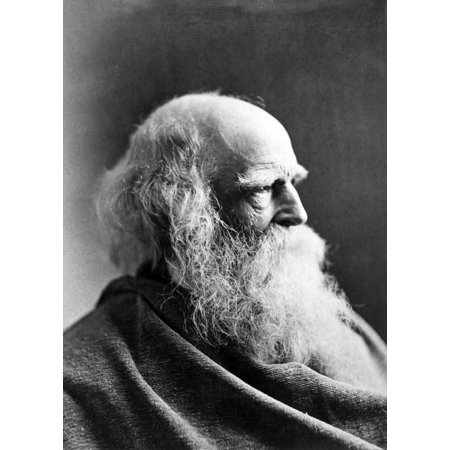 William Cullen Bryant N(1794-1878) American Poet And Editor Original Cabinet Photograph 1873 By Napoleon Sarony Rolled Canvas Art -  (24 x 36) (Best Halloween Photo Editor)