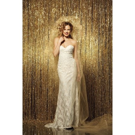 Sparkly Door Curtains (9ft SEQUINS PHOTOGRAPHY BACKDROP 54