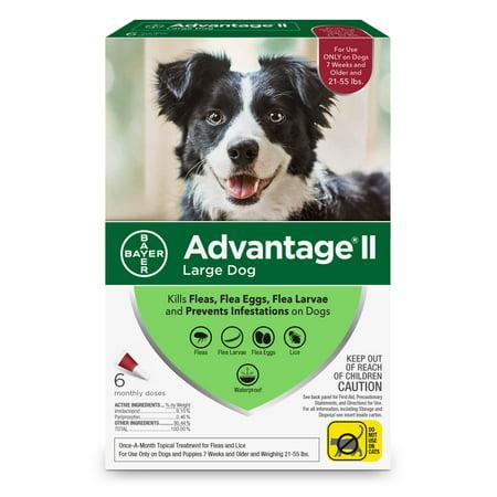 Advantage II Flea Treatment for Large Dogs, 6 Monthly (Dog Topical Flea Treatment)