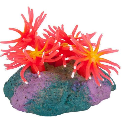 AquaGarden Anemone
