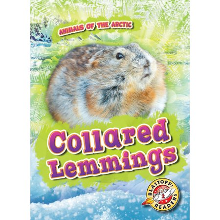 Animals of the Arctic: Collared Lemmings (Hardcover)