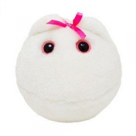 Giant Microbes Plush - Giant Microbes S-PD-0245 Egg Cell Plush Toy