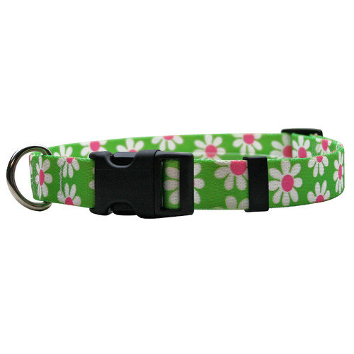 Yellow Dog Design Daisy Standard Collar - Cat