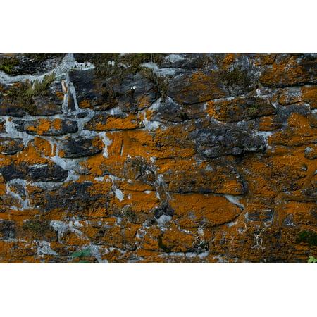 Canvas Print Wall Background Masonry Stone Wall Old Brick Wall Stretched Canvas 10 x 14