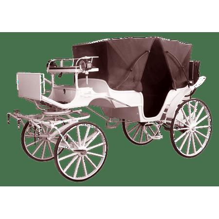 Canvas Print Coach Tours White Coachman Carriage Rides Wedding Stretched Canvas 10 x 14