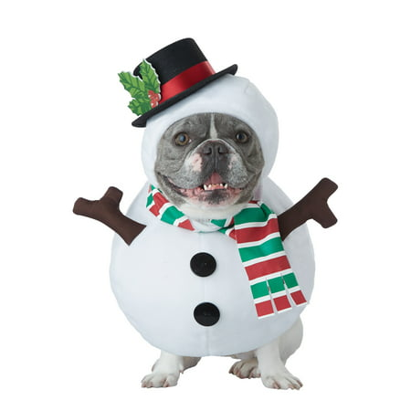 Cool Pet Costumes (Winter Snowman Pet Costume)