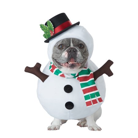 Winter Snowman Pet Costume - Costumes For Pet Hedgehogs