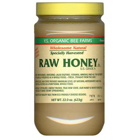 Health Honey   Raw  Unheated  Unprocessed Ys Eco Bee Farms 22 0 Oz  Paste