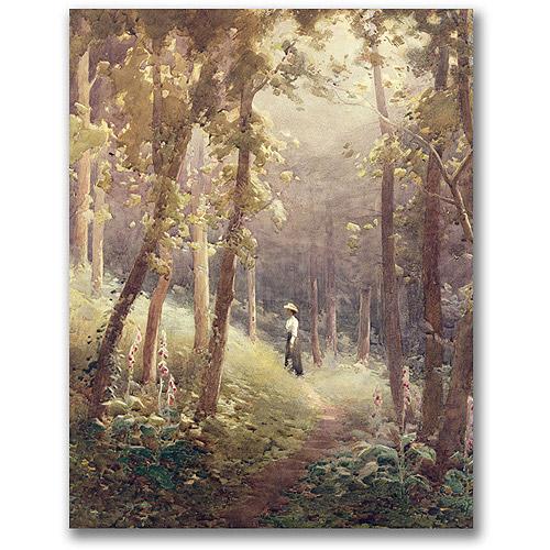 "Trademark Fine Art ""A Woodland Glade"" Canvas Wall Art by John Faraquharson"