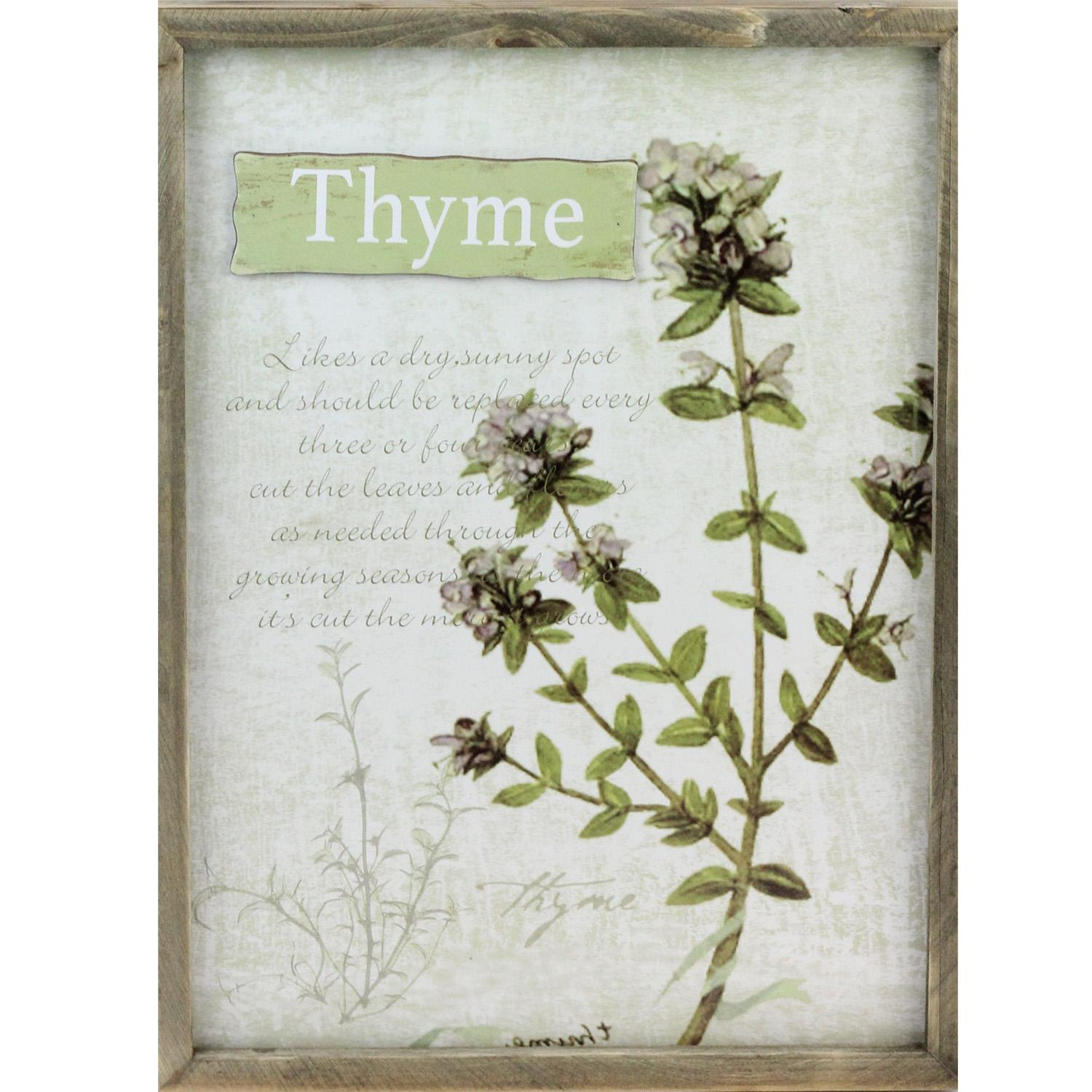 "15.75"" Decorative Thyme Herb Wood Framed Wall Hanging Plaque by Melrose"