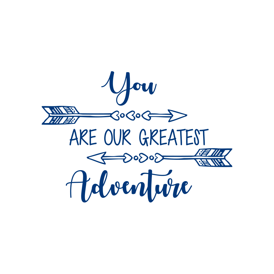 You Are Our Greatest Adventure Quote Wall Decal Nursery Kids Decor Arrow Decal F8 (black)