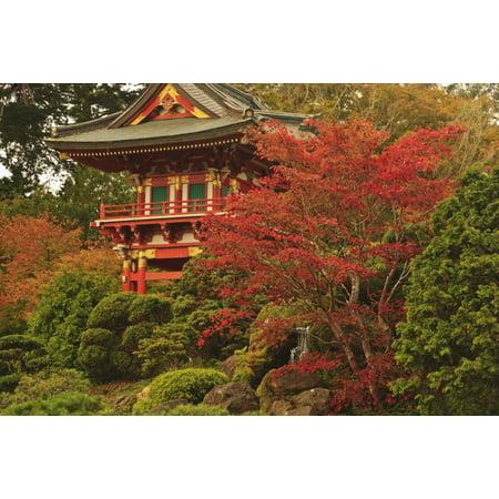 Japanese Tea Garden In Golden Gate Park San Francisco California United States Of America Stretched Canvas - Stuart Westmorland  Design Pics (19 x