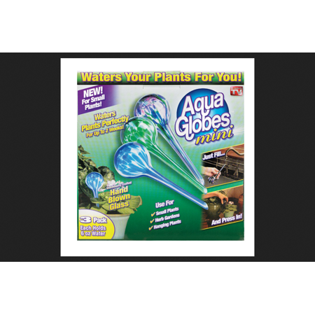 Aqua Globe As Seen On TV 6 oz. Glass Assorted Plant -