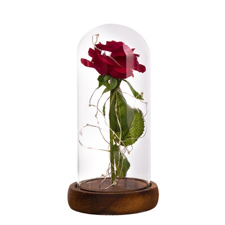 Glass Cover Internal Rose DIY Decoration Lamp KTV Romantic LED Atmosphere Small Night Light Valentine's Day Gift