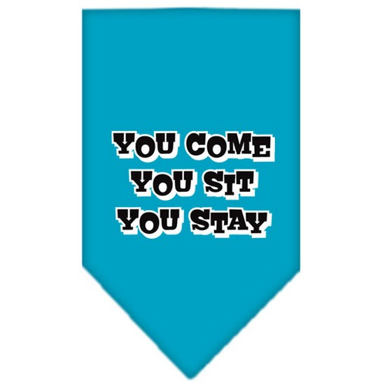 Image of Mirage 66-74 SMTQ You Come You Sit You Stay Pet Bandana Turquoise Sm