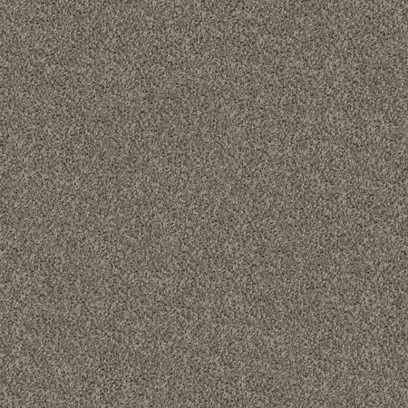 Berkshire Mid-Century Collection Carpet Tiles, 24 in. x 24 in. ( 12 Tiles/Case ), covers 48 sq. ft. Cleveland Browns Carpet Tiles