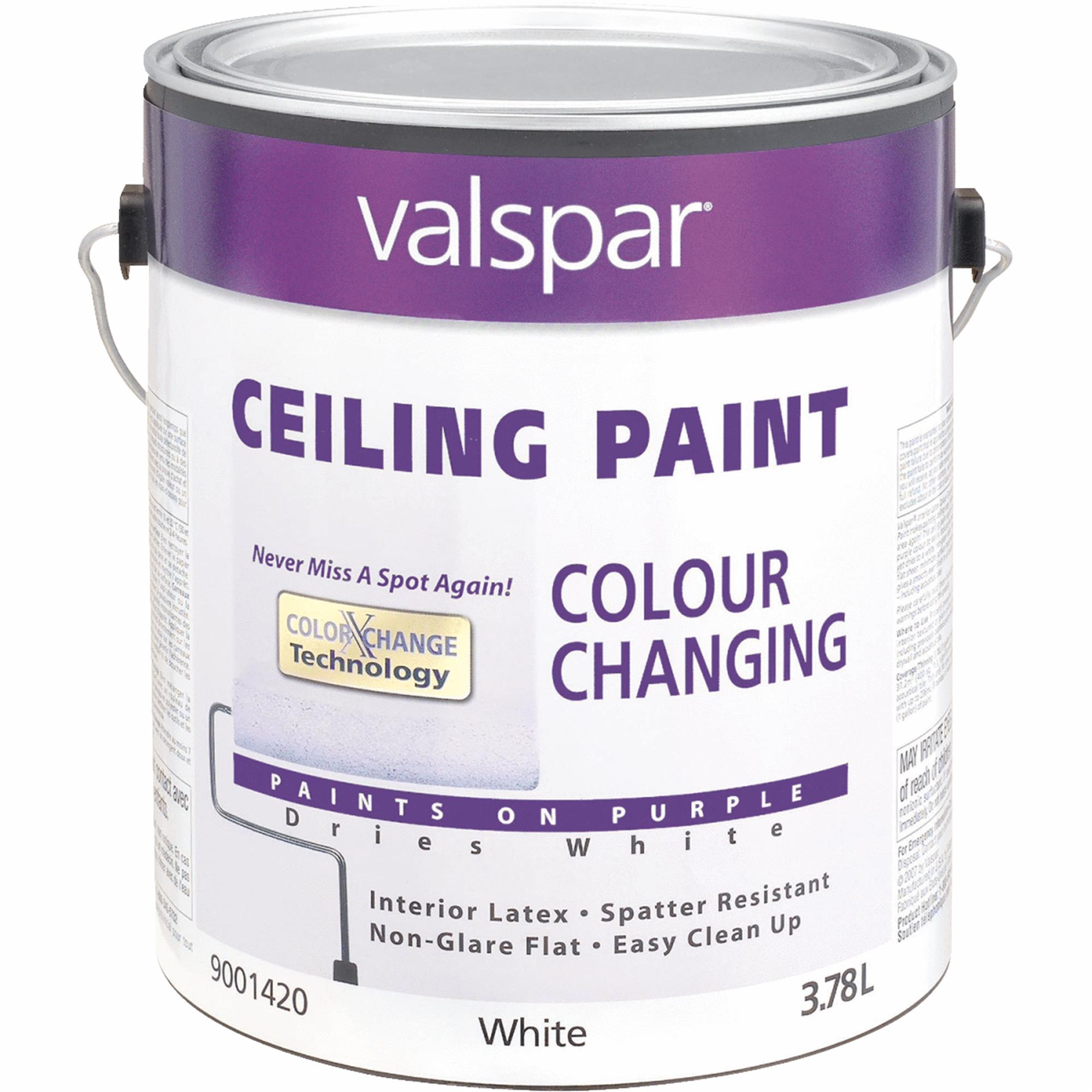 Valspar Color Changing Latex Flat Ceiling Paint
