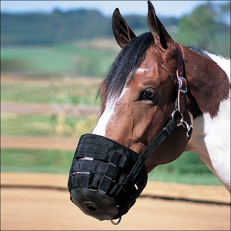 AVERAGE HORSE WEAVER NYLON RUBBER LINED GRAZING MUZZLE W/ LEATHER CROWN BLACK Best Friend Grazing Muzzle