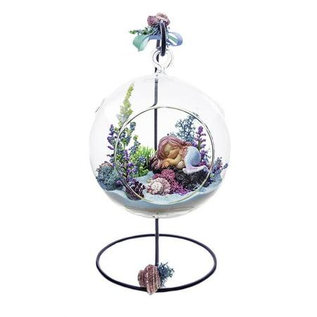 Glass Terrarium Globes (Terrarium Kit | Rockin' Mermaid | Mermaid Series | Complete Terrarium Gift Set with Stand | 6