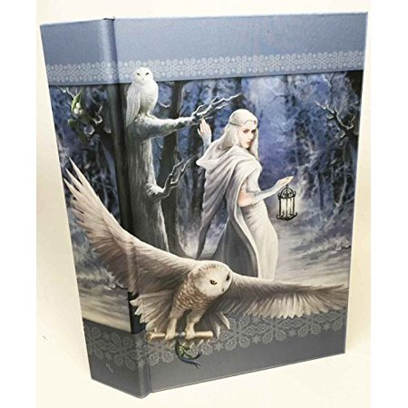 Anne Stokes Snow Owl Midnight Messenger Fairy Beautiful Book Box 11 Long