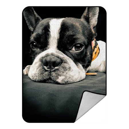 YKCG Funny Dog Animals A French Bulldog Blanket Crystal Velvet Front and Lambswool Sherpa Fleece Back Throw Blanket - Crystal Bulldog