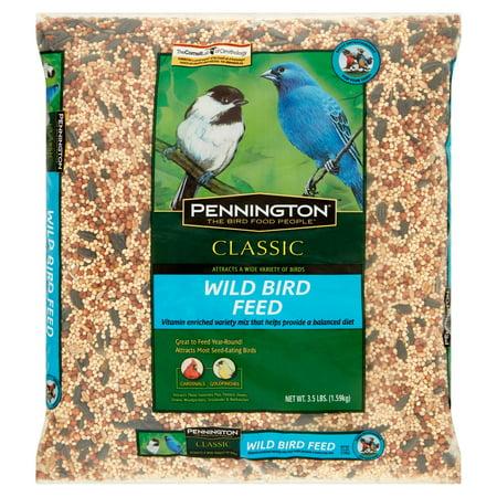 Pennington Classic Wild Bird Feed and Seed, 3.5 lbs - Homeless Beard