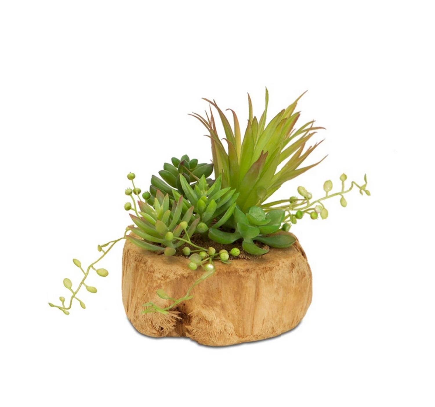 "6.5"" Green and Brown Artificial Succulent Arrangement in a Driftwood Style Planter"