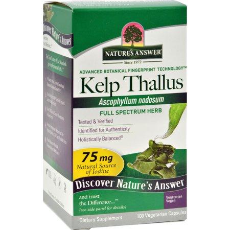 Natures Answer Natures Answer  Kelp Thallus, 100 ea