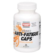 Hammer Nutrition Anti-Fatigue Caps 90 Capsule